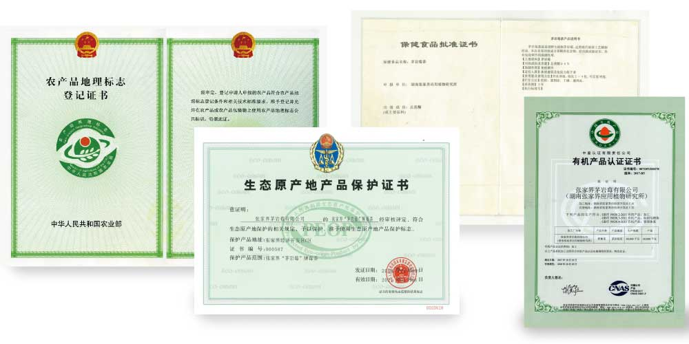 茅岩莓资质证书